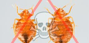 Odabir najboljeg lijeka za kukce