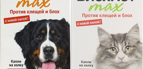 Sredstva Blohnet za mačke i pse: mišljenja i upute za uporabu