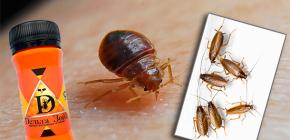 Lijek za stjenice i žohare Delta Zone: opis i osvrti