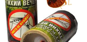 Korištenje insekticidnih dimnih bombi za uništavanje kukaca u sobi