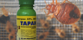 Lijek za stjenice Ram