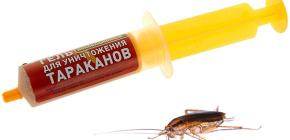 Lijekovi za žohare u štrcaljki (gelovi): pregled lijekova i nijanse njihove uporabe